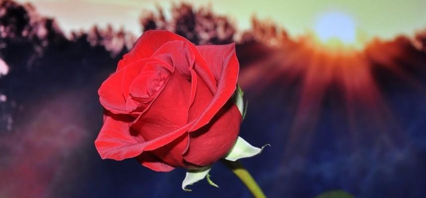 Romantic Soul