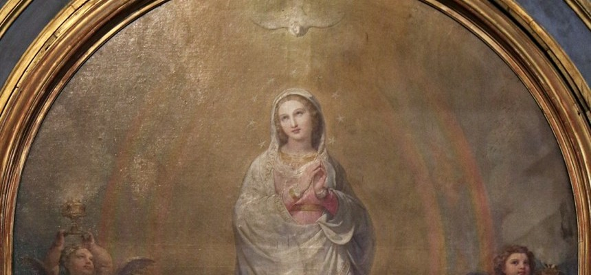 The most Blessed Virgin Mary, in the first instant of her conception, by a singular grace and privilege granted by almighty God, in view of the merits of Jesus Christ, the savior of the human race, was preserved free from all stain of original sin.