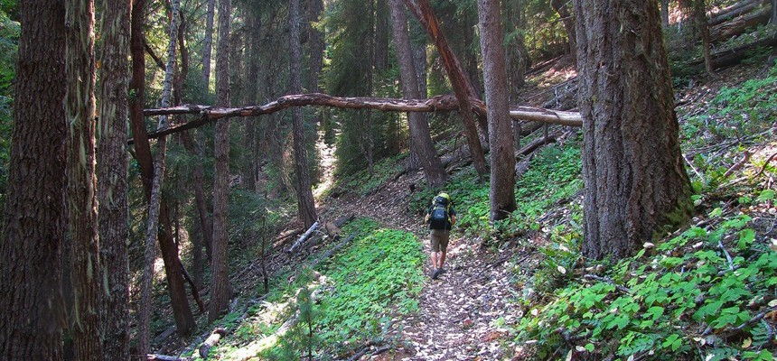 "Moral Relativism and ""Wild: From Lost to Found on the Pacific Crest Trail"" by Cheryl Strayed"