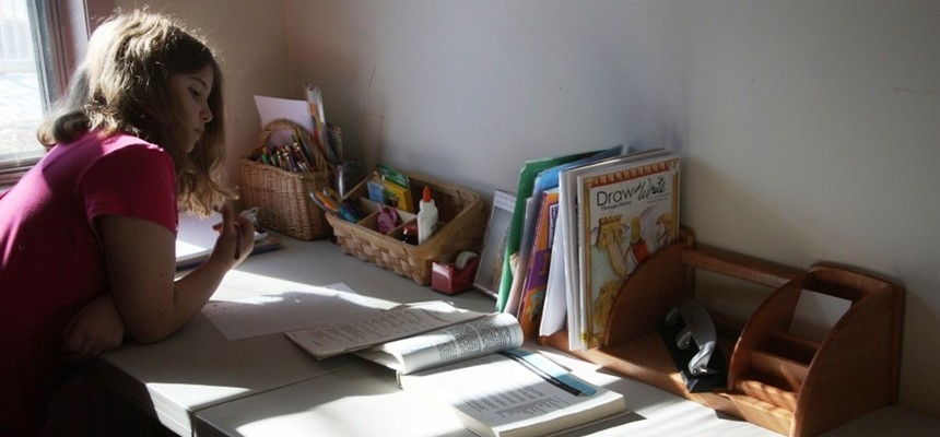 Homeschooling and More...