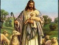"""""""The complexities of life can never be untangled by man; like a sheep without a shepherd we have been self-programmed for destruction because we are all sinners……… Jesus Christ is the only way."""""""