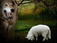 The wolf dwells with the lamb, in the Catholic Church