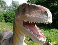 Hugh Owen and Dinosaurs!