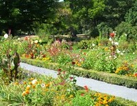 Where Beautiful Gardens Grow