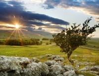 Towards the Mystic Way - Through Mystical Theology